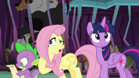 """Fluttershy """"Clarissa the pig has two tails"""" S8E26"""
