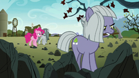Pinkie, Marble, and Limestone on the farm S8E3