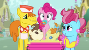 Pinkie Pie with pacifier in her mouth S4E12.png