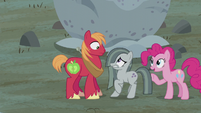 Pinkie declares Mac and Marble team one S5E20