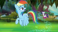 "Rainbow Dash ""nah, it's too deep"" S8E17"