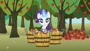 S02E15 Rarity w kontroli jakości jabłek