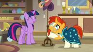 S07E24 Twilight i Sunburst oglądają stary stojak na kapelusze