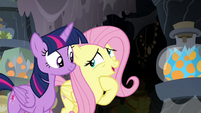 """Fluttershy """"Meadowbrook was looking for a cure"""" S7E20"""