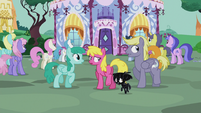 Ponies outside Carousel Boutique S5E9