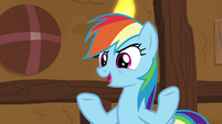 Rainbow -if these yaks don't like it- S8E18