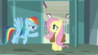 "Rainbow Dash ""what took you so long?"" S9E21"