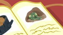 An illustration of a tortoise waking up from hibernation S5E5