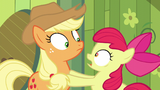 Apple Bloom freaking out in front of Applejack S05E04