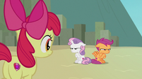 Apple Bloom watches Sweetie and Scootaloo sulk S8E6