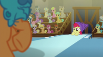 Apple Bloom watches Tender Taps dance on stage S6E4