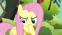 Fluttershy thinking -that does explain the paper eating- S03E10