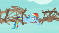 """Rainbow Dash """"easy to work with"""" S8E9"""