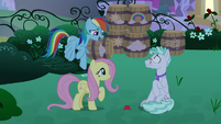 """Rainbow Dash """"screw it up at all!"""" S9E17"""