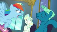 Rainbow Dash asks for Sky Stinger's name S6E24