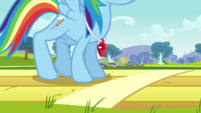 Rainbow Dash cracking joints S2E22