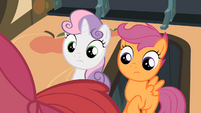 Scootaloo & Sweetie Belle see Apple Bloom S2E12