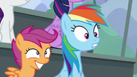 Scootaloo and Rainbow watching in awe S8E20