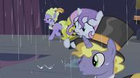 Sweetie sees ponies running away S4E19