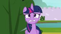 Twilight Sparkle in deep worry S9E4