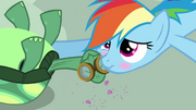 640px-Rainbow Dash affectionatly blushing S3E11.png