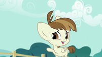Featherweight -unless of course that would be a royal pain- S5E19