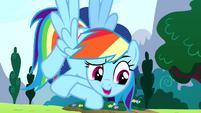 "Rainbow Dash ""it's my birth-iversary"" S4E12"