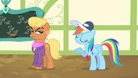 """Rainbow Dash """"quite, quite correct"""" S4E05"""