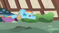 Rainbow Dash flying away S1E25