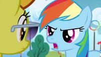 Rainbow Dash tells off Spitfire S4E10