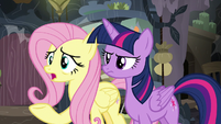 """Fluttershy """"why are you in Mage Meadowbrook's home?"""" S7E20"""