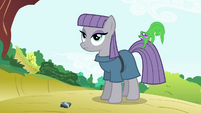 Maud Pie with Gummy biting on her tail S4E18
