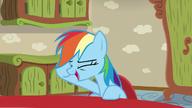 S06E11 Rainbow śmieje się z pomysłu brata Fluttershy