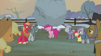 Apples and Pies listening to Pinkie S5E20