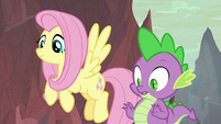 Fluttershy and Spike look at the eggs S9E9