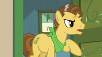 """Grand Pear """"the Pears are moving!"""" S7E13"""