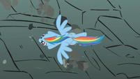 Rainbow Dash soars past the rocks S01E07