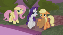 """Rarity """"you did tell us you'd changed"""" S9E17"""