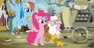 S05E08 Pinkie mówi Gildzie o przyjaźni