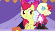 S05E17 Apple Bloom patrzy na szaleństwa Orchard Blossom