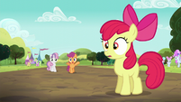 Apple Bloom hears Scootaloo S5E17