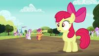 Apple Bloom hears Scootaloo S5E17