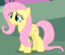 Fluttershy ID S1E17.png