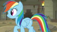 Rainbow follows Daring in the temple S9E21