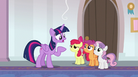"Twilight Sparkle ""you can't be my students"" S8E12"