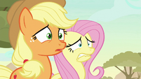 AJ and Fluttershy disturbed by Ticket Pony S8E23