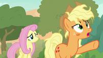 "Applejack ""we gotta get up that peak!"" S8E23"