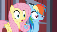 Fluttershy and Rainbow Dash gasp S03E09