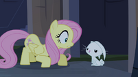 Fluttershy smothering Angel S4E03