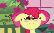 S01E12 Biedna Apple Bloom